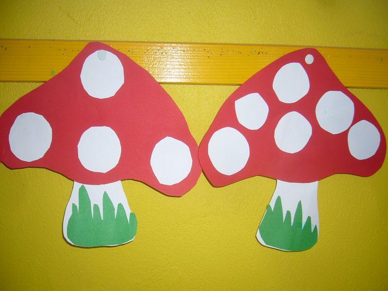 Pilze standen heute auf dem Stundenplan der 4. Klasse der Grundschule in Neuburg.