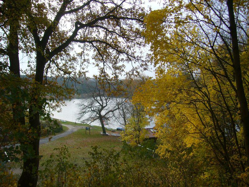 Zu einer goldenen Novemberwanderung am Pinnower See bei Schwerin waren Pilz- und Naturbegeiserte am Sonnabend, dem 10. November 2012, ganz herzlich eingeladen.
