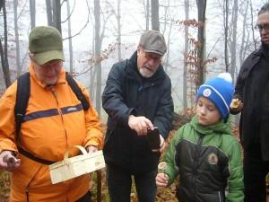 Immer wieder werden die verschiedensten Arten gefunden und fotografisch festgehalten. Hier sind es zwei essbare Rosablättrige Helmling die Jonas gefunden hat.