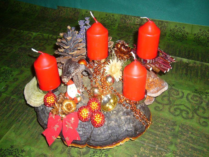 Rundliches Adventsgesteck, etwa 30 cm im Durchmesser mit 4 roten Stumpenkerzen auf Rotrandigem Baumschwamm mit Striegeliger Tramete, Zapfen und Weihnachtsdekoration zu 12,50 €.