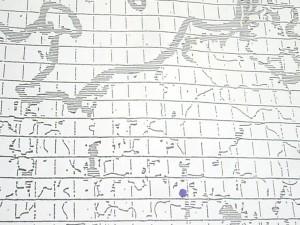 Agaricus macrocarpus Moell.