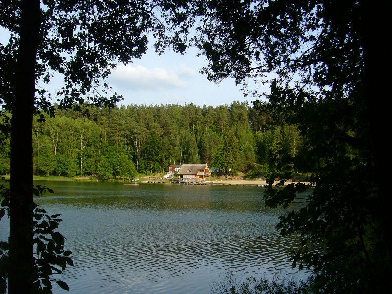 Am 1. September ist es wieder soweit. Die Pilzfreunde aus Rehna und Wismar treffen sich zum 9. mal an der Blockhütte am Roten See.