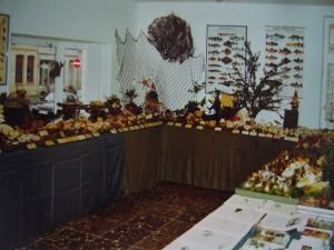 Unsere erste Großpilzausstellung in den Räumlichkeiten des heutigen Steinpilz - Wismar, in der ABC Straße 21, im Jahre 2004.