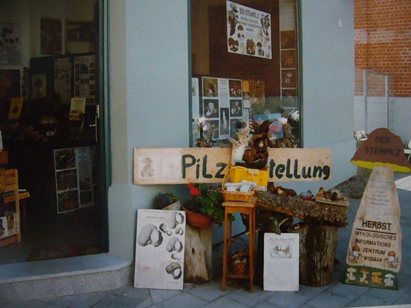 Im September 2003 öffnete der Steinpilz - Wismar in der ABC Strasse 28, genau gegenüber dem heutigen, größeren Dimizil, erstmals sein Pforten als Nachfolge der städtischen Pilzberatungsstelle in Wismar.