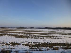 Dieses Foto habe ich heute Morgen in Keez gemacht. Hier ist die Landschaft noch weitgehend mit Schnee bedeckt und die Wälder sind noch richtig zugeschneit. Am Sonnabend ist die erste Pilzlehrwanderung des Jahres. Ob wir uns wohl noch Skier anschnallen sollten?