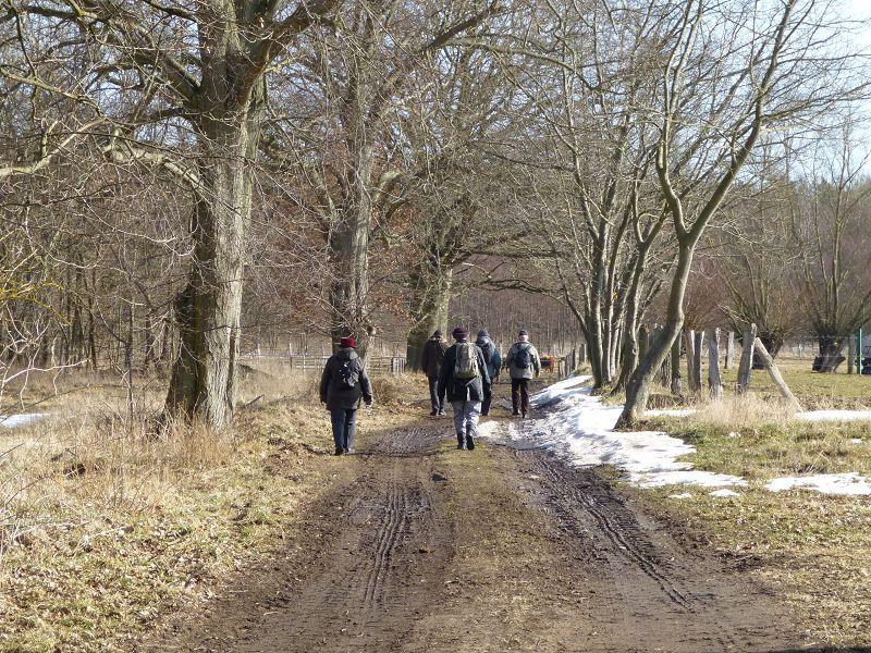 An Wiesen und Viehweiden entlang ging es in Richtung Wald.