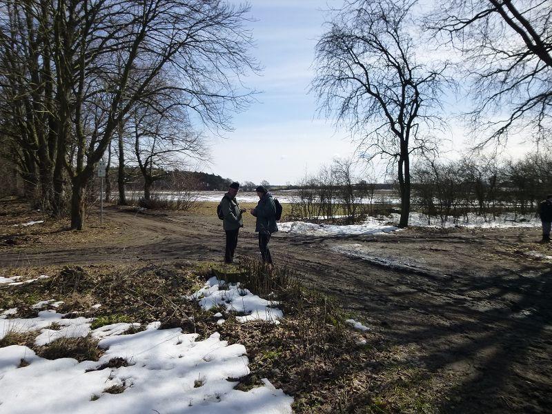 Und an dieser Waldwegkreuzung, der sogenannten Vierblattkreuzung, bat Bernhard Virgens nochmals um Gehör. Warum Vierblattkreuzung? - An dieser Kreuzung stehen sich vier verschidene Bäume gegenüber. Die Roßkastanie, die Wildbirne, die Eiche und die Linde.
