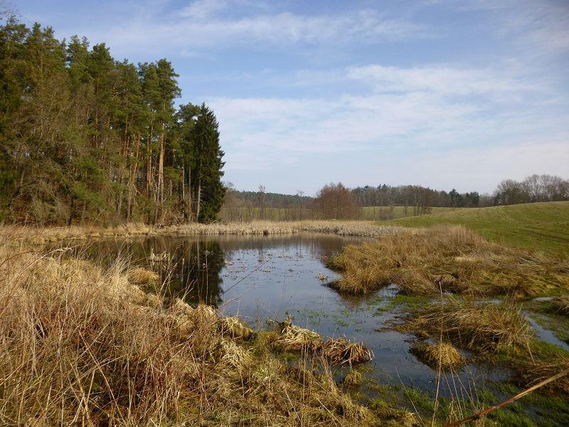 Die wunderschöne Landschaft zwischen Kaarz, Alt Necheln, Weitendorf und Brüel war heute noch überwiegend von Brauntönen dominiert, dass wird sich aber in den nächsten Tage radikal ändern.