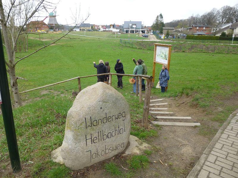 Wer durch das Hellbachtal bei Neubukow wandert, befindet sich gleichzeitig auf dem Jakobsweg. In diesem Sinne starteten wir an der neu erbauten Fischtreppe zu unserer ersten Exkursion durch ein klassisches Morchelgebiet.