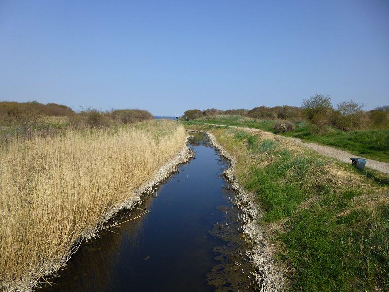 Ein Flüßchen bahnt sich den Weg in Strandnähe bei Barendorf den Weg in die Ostsee.