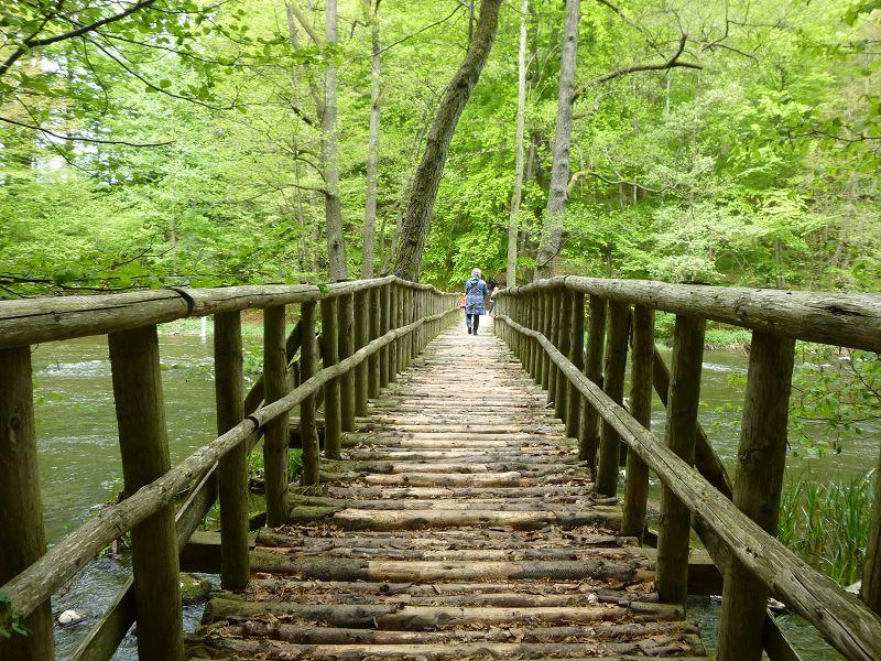 Dann ging es über die große Warnowbrücke auf die gegenüber liegende Seite und eine kleine Pause war angesagt.