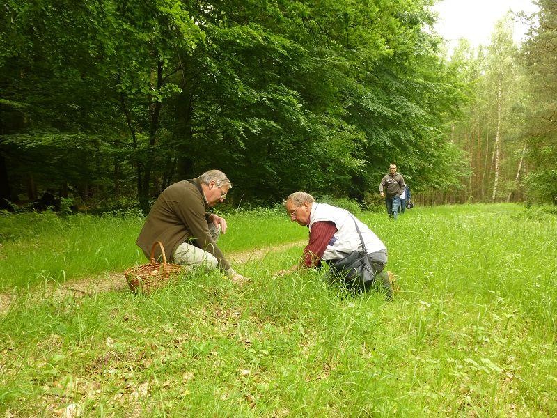 Hier haben Klaus und Wolfgang am grasigen Wegrand etwas nicht alltägliches entdeckt und auch Andreas ist auf dem Weg zum Fundort um einige Aufnahmen zu machen.