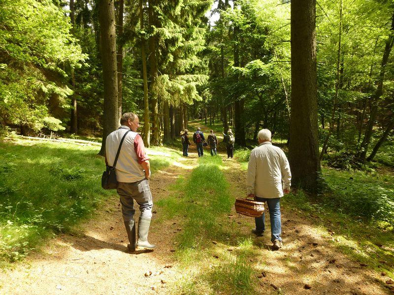 Und weiter geht es bei herrlichstem Frühsommerwetter durch eines der schönsten und größten Waldgebiete im nordwestmecklenburger Raum.
