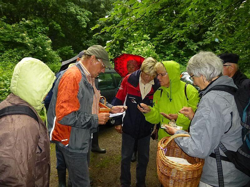 Zunächst brachte uns wie immer Klaus (Mitte links) einige interessante Pilze zum anschauen mit. Bei den teils sehr kleinen Pilzchen ist eine Lupe sehr hilfreich.