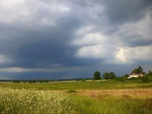 Hoffen wir also, dass uns so bald wie möglich wieder ein solcher, regenversprechender Anblick, wie hier am 03. Juli bei Venzkow, erfreuen wird. Gestern Abend sah es hier ähnlich aus, aber bis auf einige Spritzer Regen blieb es leider trocken.