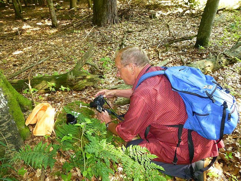 Der auf den ersten Blick unscheinbare Pilz, den Klaus hier fotografiert, war der Top - Fund unserer heutigen Exkursion!