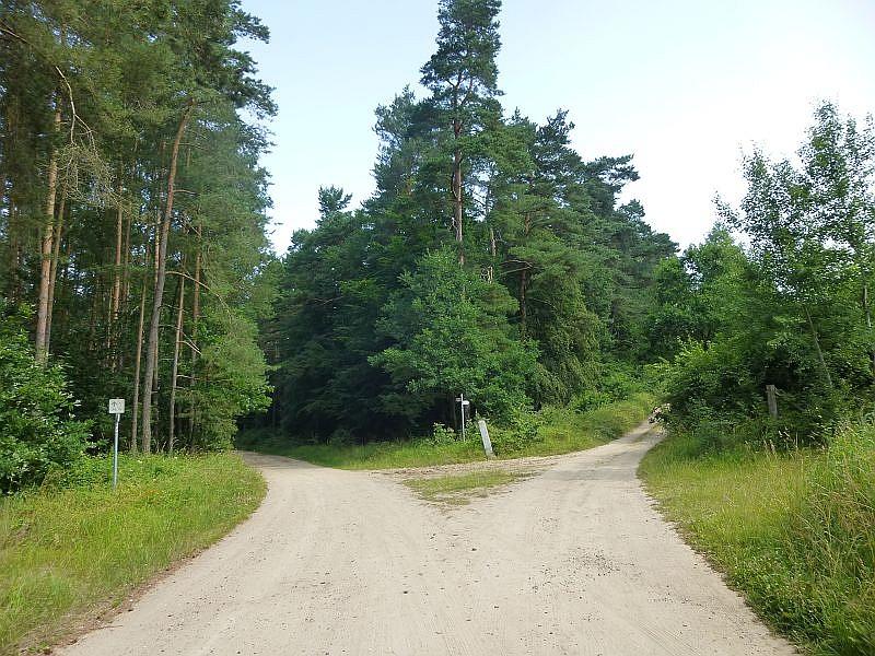 Durch sandige Laub- und Nadelwälder führte uns die heutige Pilzwanderung bei schönstem und sehr angenehmen Sommerwetter vom Waldhotel bei Neukloster bis zum ehemaligen Wald - Haltepunkt der Bahn, bei Neumühle.