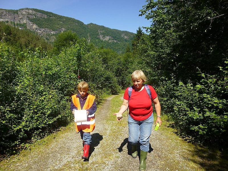 Nach dem wir wieder auf einem kleinen, gemütlichen Campingplatz mitten im Gebirge in derr Nähe von Bergen unterkamen, ging es am nächsten Tag bei weiterhin sonnigem und warmen Wetter zu einer kleiner Erkundungstour in den Wald.