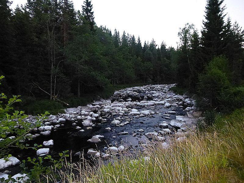 Viele Gebirgsbäche führen aufgrund der Trockenheit nur noch wenig Wasser oder sind schon gänzlich versiegt. Kalkablagerungen auf den Steinen bieten einen interessanten Kontrast zum dunklen Flußbett.