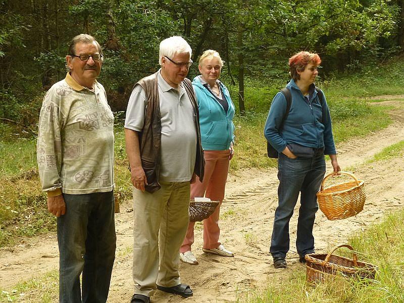 Aber dann hielten fast alle inne und schauten in den Wald hinnein. Soll dort tatsächlich ein richtiger Pilz mit Hut und Stiel stehen?