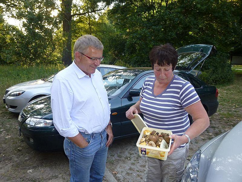 Gleich zu Beginn zeigte uns Pilzfreundin Angelika Boniakoswki eine Dose mit Frischpilzen, die sie auf ihrer letzten Pilztour für die Ausstellung im Steinpilz - Wismar gesammelt und liebevoll im Kühlschrank aufbewahrt hatte.