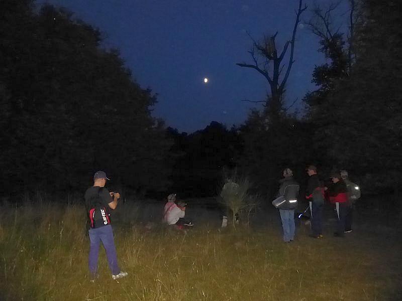 Einen kleinen Moment inne halten und die warme Sommernacht im Mondschein genießen!