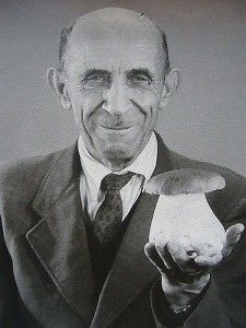 Das ist wirklich ein Prachstück eines Steinpilzes, den der Rentner Retzlaf aus Wakrstorf auf der Suche nach Hallimsch am 08. Dezember 1964 im Wald fand. Wer sich nicht sicher ist, unter dem Foto finden sie die Sprechzeiten der Pilzberatung in Wismar.