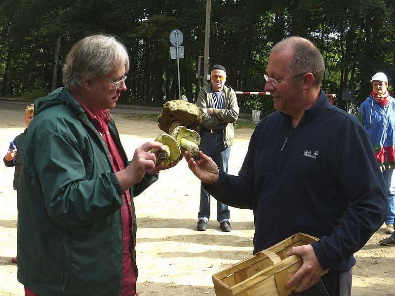 Während der Begrüßung überreichte mir Torsten Richter diese wunderbaren Wurzelnden Bitter - Röhrlinge für unsere geplante Pilzausstellung. Foto: Degenhardt.