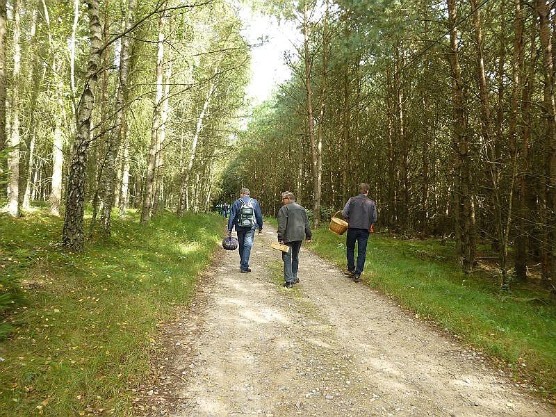Aber dann ging es los zu einem kleinen Rundkurs durch dieses freundliche, überwiegend von Kiefern und Fichten bestandene, weitläufige Waldgebiet mit teilweisem Heidecharakter.