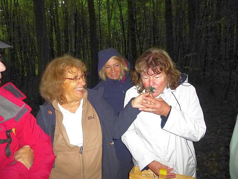 Wie wichtig der Geruch bei der Bestimmung vieler Pilzarten ist, konnte heute eindrucksvoll an Langstieligen Knoblauchschwindlingen oder, so wie hier, am Grünen Anis - Trichterling demonstriert werden. Natürlich sind bei weiten nicht alle Pilze so Geruchsintensiv, aber dennoch gehört der Geruch zu den wichtigsten Bestimmungsmerkmalen vieler Pilzarten.