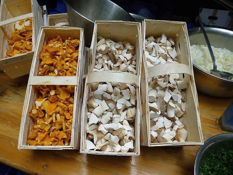 Um eine ausgiebige Pilzpfanne unabhängig von unseren Pilzfunden zu garantieren, wurden im Vorfeld einige Pilze im Handel gekauft. Hier sehen wir Pfifferlinge und Kräuterseitlinge.