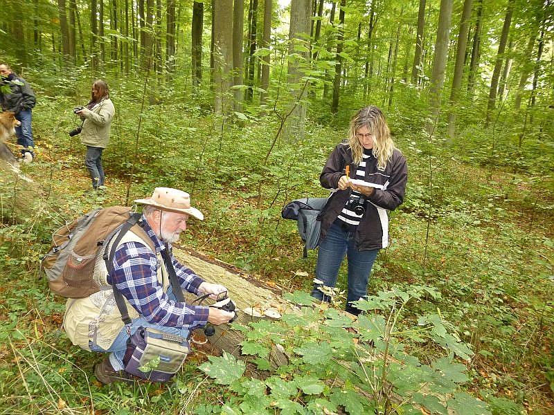 Ich fuhr mit einer etwa 15 Köpfigen Gruppe zur sogenannten Betonspur des Woitendorfer Waldes. Hier sehen wir Lübecker Naturfreunde, die sich nicht nur für Pilze interessieren. Heute standen diese aber im Vordergrund und es wurde fleißig notiert und fotografiert.