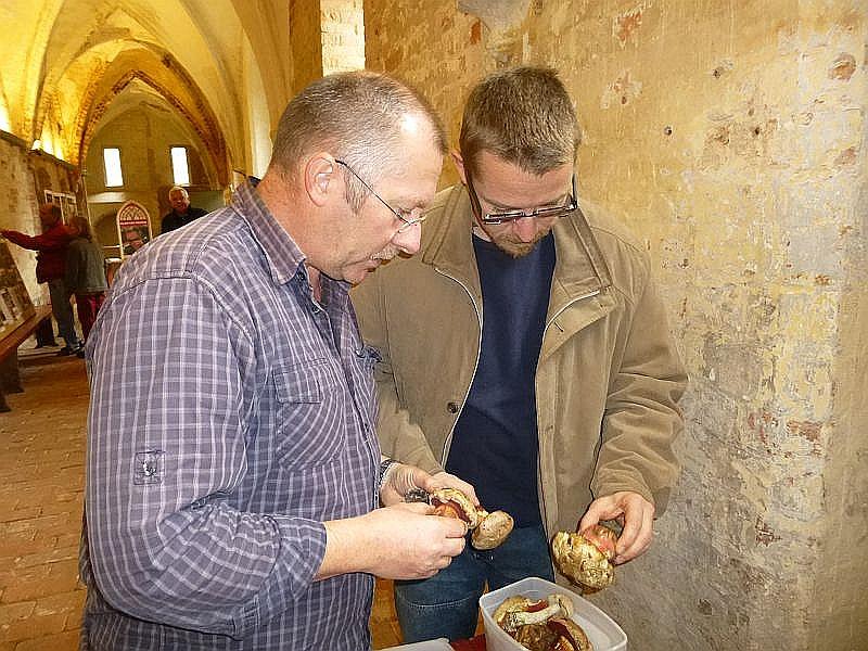 Auch Raritäten - Jäger Andreas Okrent (rechts) bereicherte die Ausstellung mit ganz besonders seltenen Exoten. Neben Satans - Röhrling auch der äußerst seltene Rosahütige Purpur - Röhrling und einmmige andere Seltenheiten konnte er beisteuern.