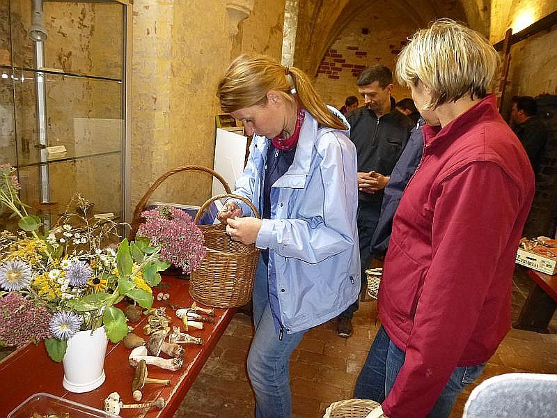 Eine junge Dame breitet ihre gesammelten Werke zur Bestimmung aus.