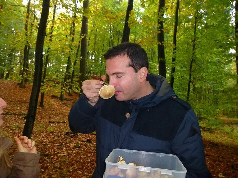 So ein Pilz wird gerne weiter gereicht, um auch den anderen Pilzfreunden dieses angehme Dufterlebnis nicht vor zu enthalten. Der Marzipan - Fäbling, wie er auch bezeichnet wird, ist als Speisepilz leider mindewertig.
