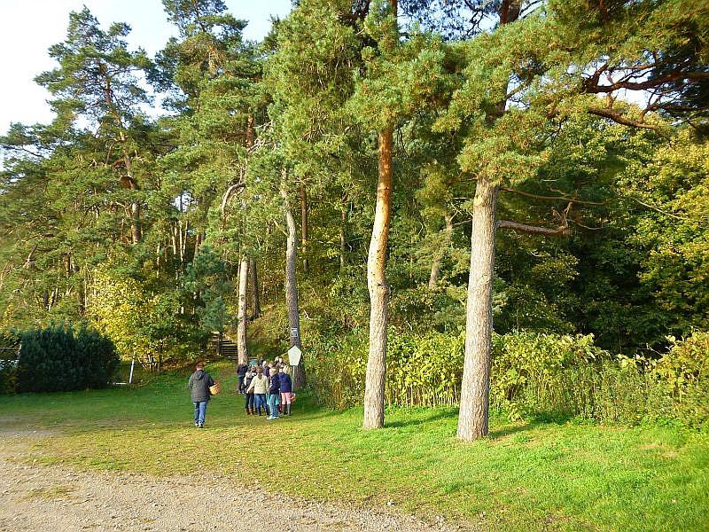 Nach dem obigen Gruppenfoto erstürmten die Schüler bei herrlichem Sonnenschein und warmen Temperaturen sogleich den bewaldeten Burgwall des Neuburger Waldes, eigentlich Forst Farpen.