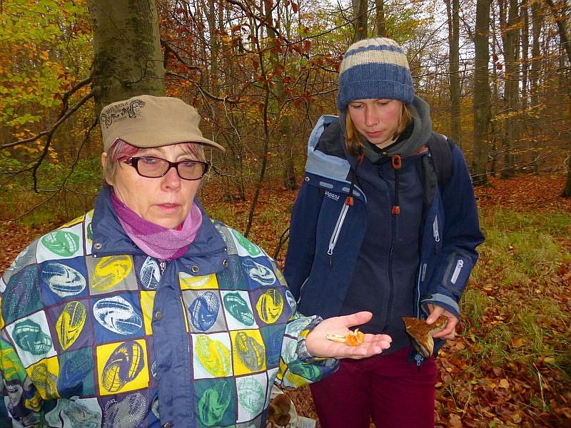 Unser am weitesten angereister Gast Carmen Graupner (links) ist auch Pilzberaterin. Das sie den Rotgelben Stoppelpilz kennt, versteht sich von selbst. Überhaupt ist ihre Artenkenntnis sehr solide! es hat Spass gemacht, mit ihr auf die Pilzpirsch zu gehen!