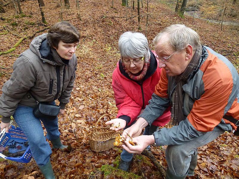 Hier erläutert Klaus Warning (rechts) den beiden interessierten Damen nochmals die feinen Unterschiede, die beim Sammeln der sehr schmackhaften Stockschwämmchen gegenüber dem Gift - Häubling zu beachten sind.