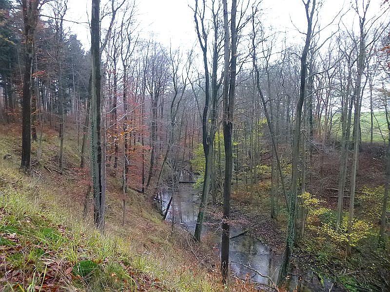 Das weitgehend naturbelassene und wildromantische Kerb - Tal der Mildenitz genießt als Flora - Fauna - Habitat (FFH) einen Schutzstatus