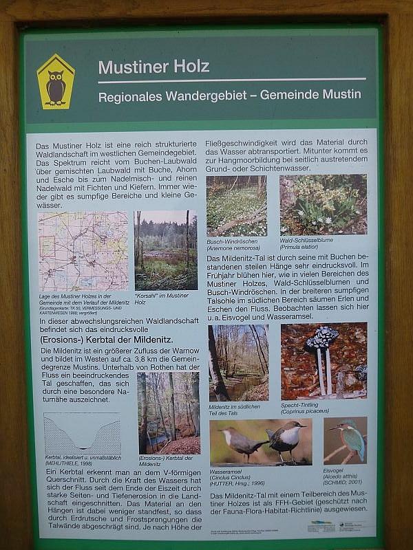 Auf einer Info - Tafel sind Besonderheiten zu diesem Gebiet erläutert und teils bildlich dargestellt.