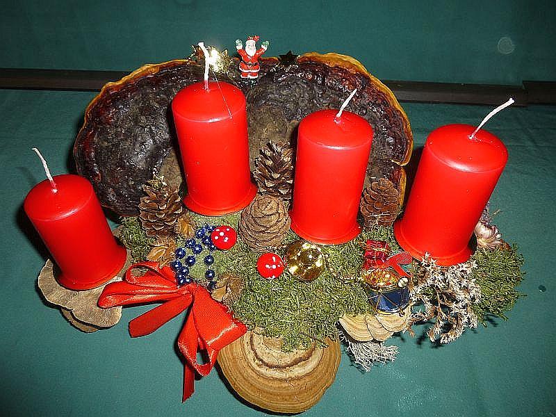 Kompaktes 4er Gesteck mit roten Stumpenkerzen auf Baumscheibe und Ast, etwa 50 cm lang und 35 cm tief mit großem, doppeltem Rotrandigen Baumschwamm, Birken - Blättling, Echtem Zunderschwamm, Striegeliger Tramete, Moos, Zapfen von Kiefer und Mammutbaum, Strohblumen, Weihnachtsdekoration und roter Schleife zu 25,00 €.