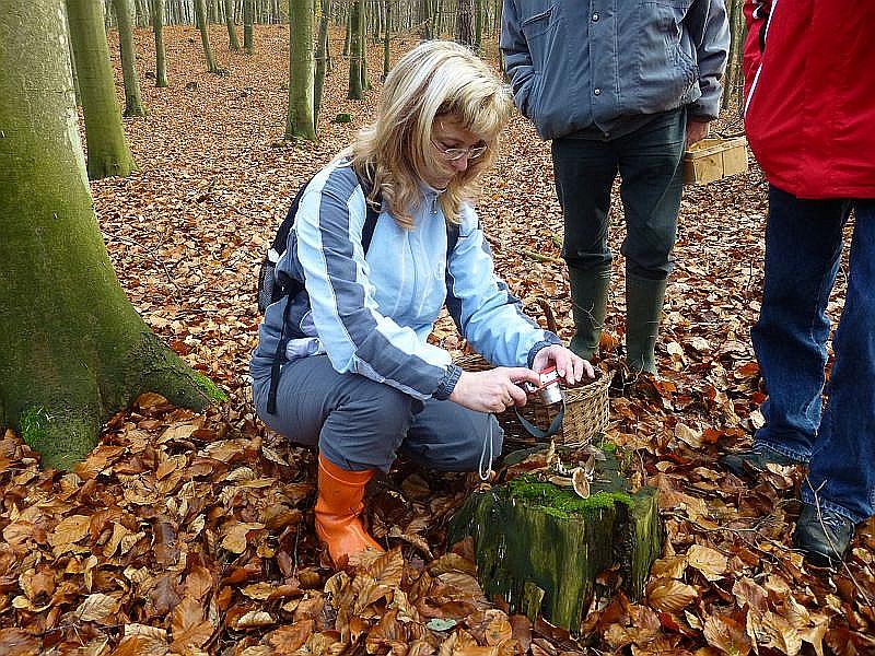 Auch diese Art wird noch schnell von der jungen, möglichen Nachwuchs - Pilzberaterin aus Werder im Foto festgehalten.