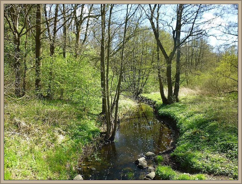 Schließlich erreichten wir auch den Aubach. Das Foto habe ich allerdings schon am 16. April 2014 hier aufgenommen.