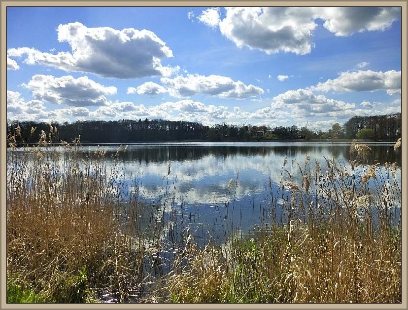Sonnihge Auftaktexkursion am 27. April 2014 von Alt Meteln bis zum Trebbower See.