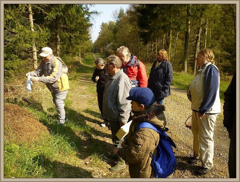 Nach kurzer Zeit wird das Tuch wieder geborgen und nun gilt es kräftig Schütteln um die kleinen Waldbewohner wieder ihrer eigentlichen Tätigkeit zu überlassen.