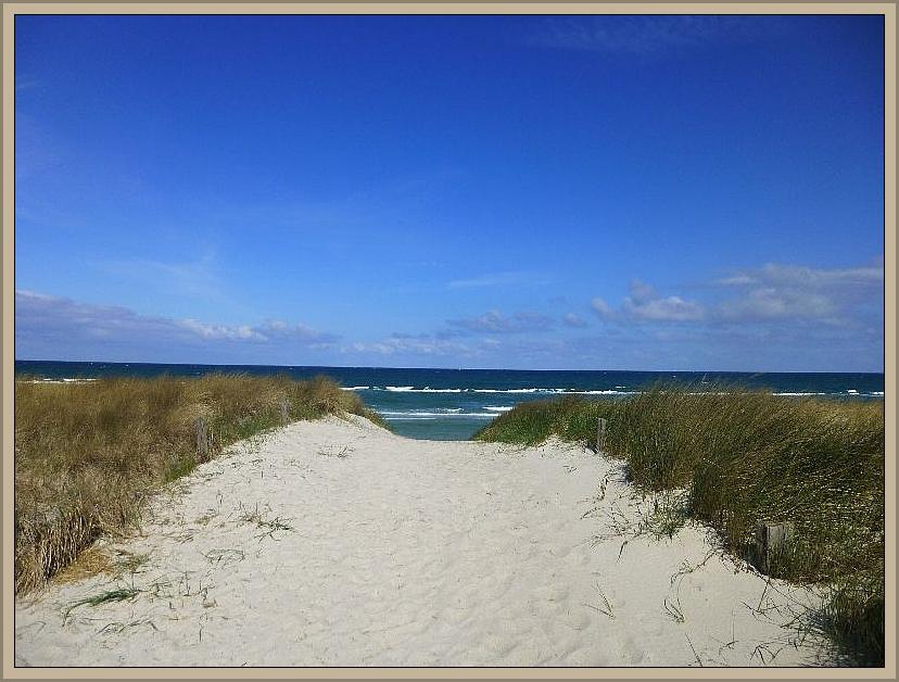 Schließlich erreichten wir den Ostseestrand mit seinen Sanddünen.