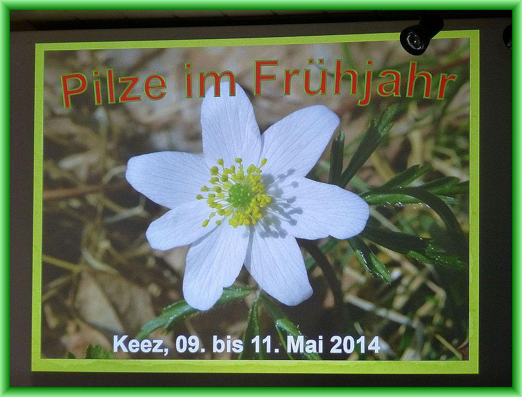 Vom 09. - 11. Mai 2014 fand in Keez unser 2. Frühlingsseminar statt.