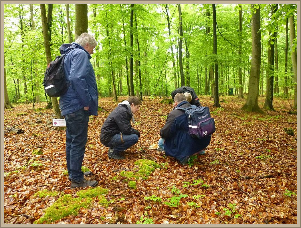 Und schon wieder wurde etwas gefunden. Wir waren alle angenehm überrascht, dass in diesem Waldstück keine lange weile aufkam. Es gab immer neues zu Entdecken.