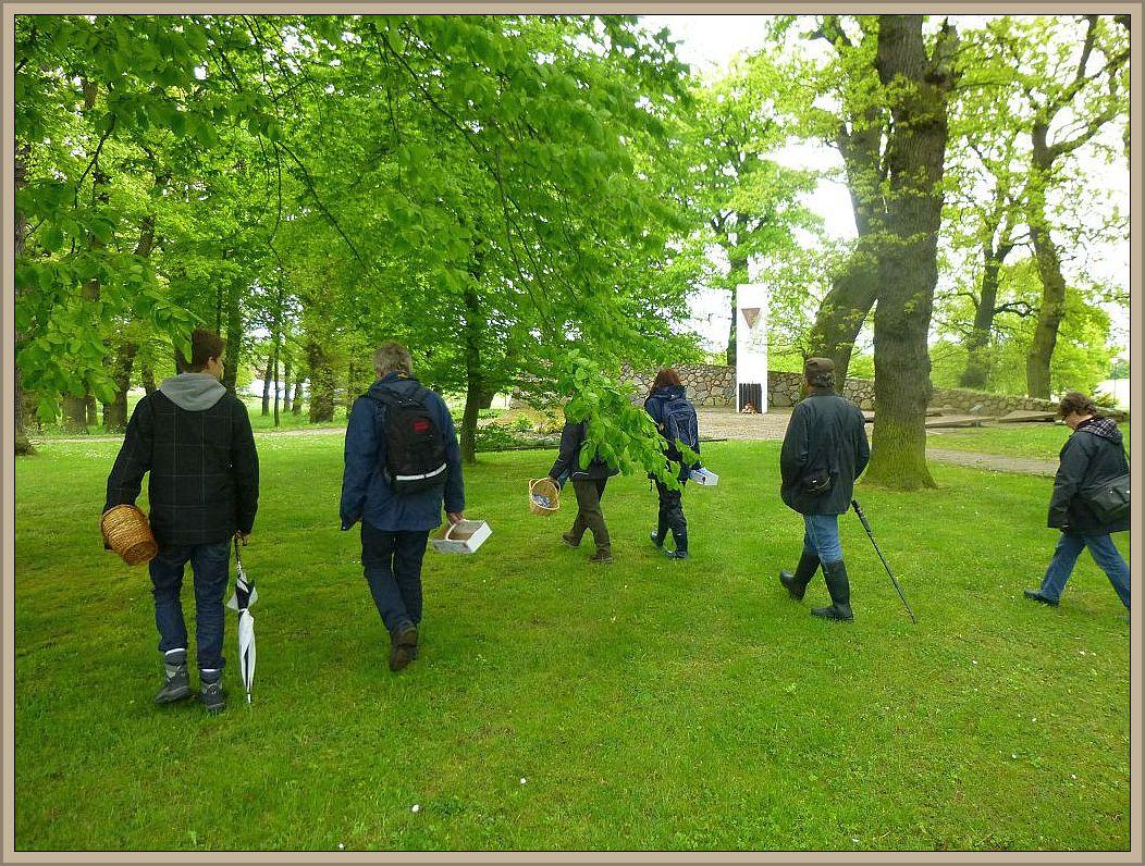 Auf der Ostsee - Insel Poel, genauer gesagt im Badeort Schwarzer Busch angelangt, ging es zunächst durch den dortigen Eichenpark an der Kurklinik.