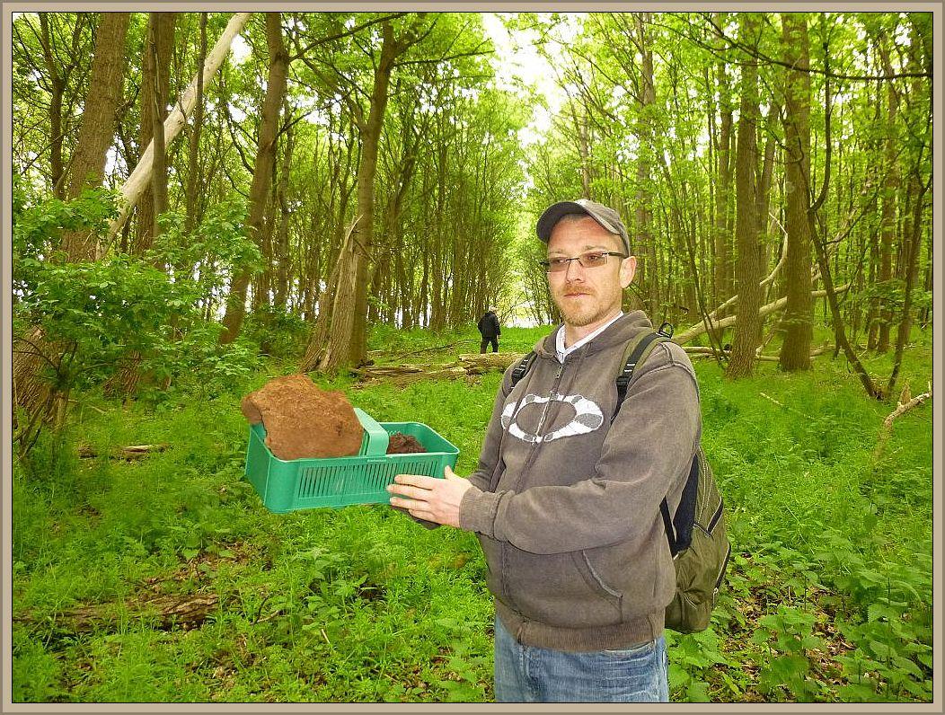 Raritätenjäger Andreas mit alten Riesenbovisten, die hier ab Mai auch schon wieder frisch wachsen können. Es gibt sie zahlreich in den Küstenschutzwäldern der Insel Poel..